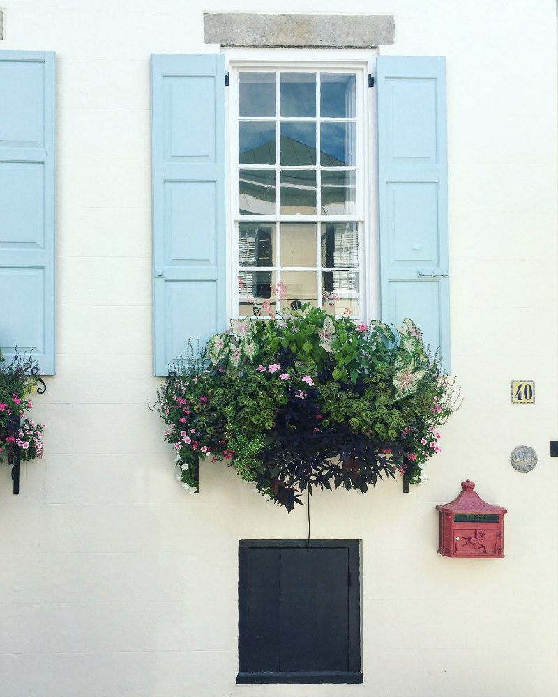 Window Box Charleston
