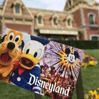 Discounted Disneyland tickets Undercover Tourist