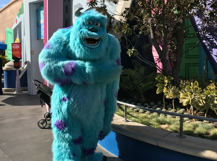 Sully from Monsters Inc at Disneyland
