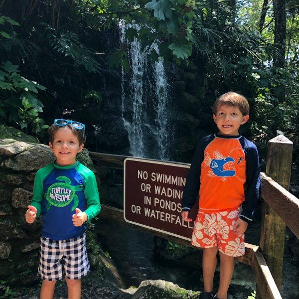 Rainbow Springs waterfalls in Ocala, Florida