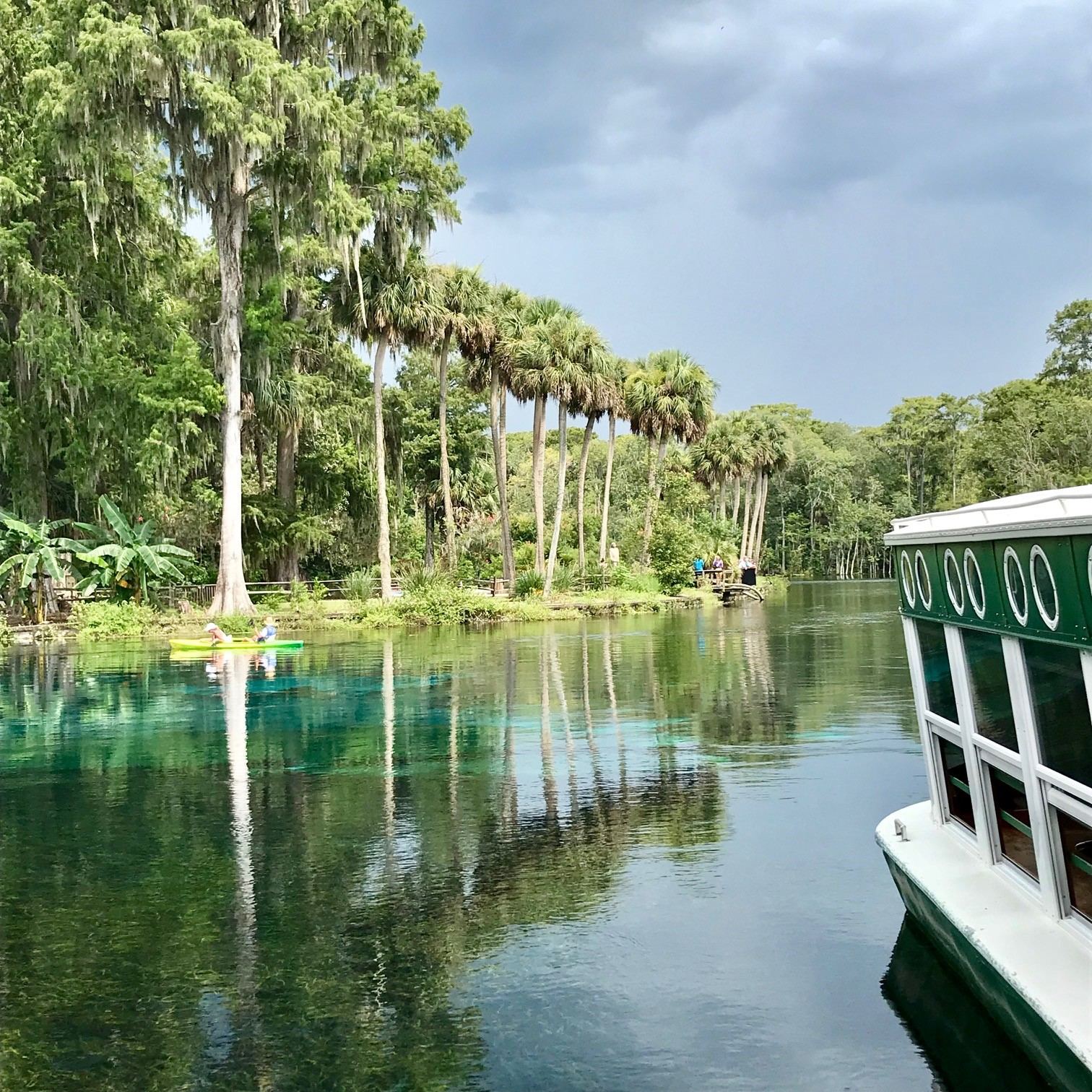 Silver Springs Silvers: Family Getaway In Ocala, Florida