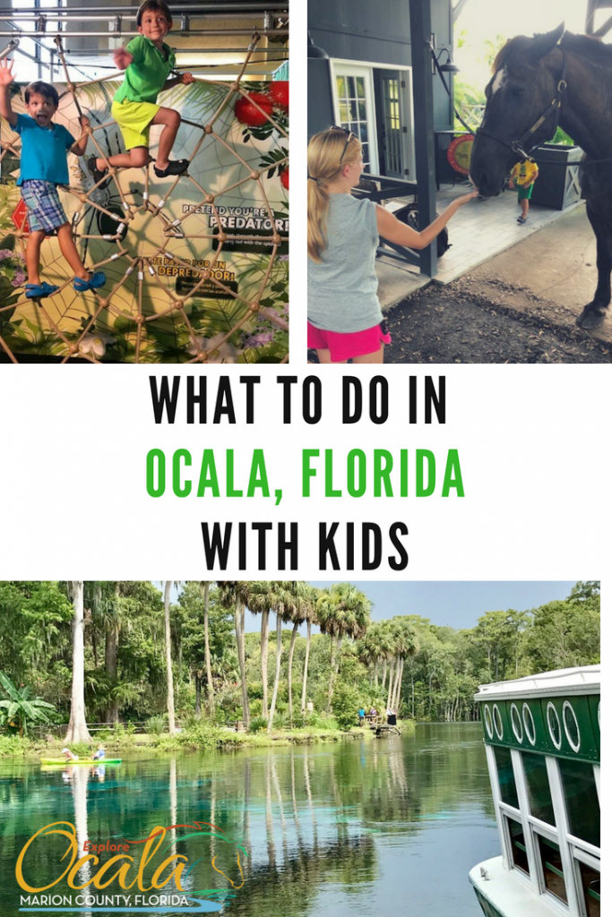 Top Things to do on a Family Getaway in Ocala Florida