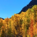 Exploring Fall Colors in Colorado