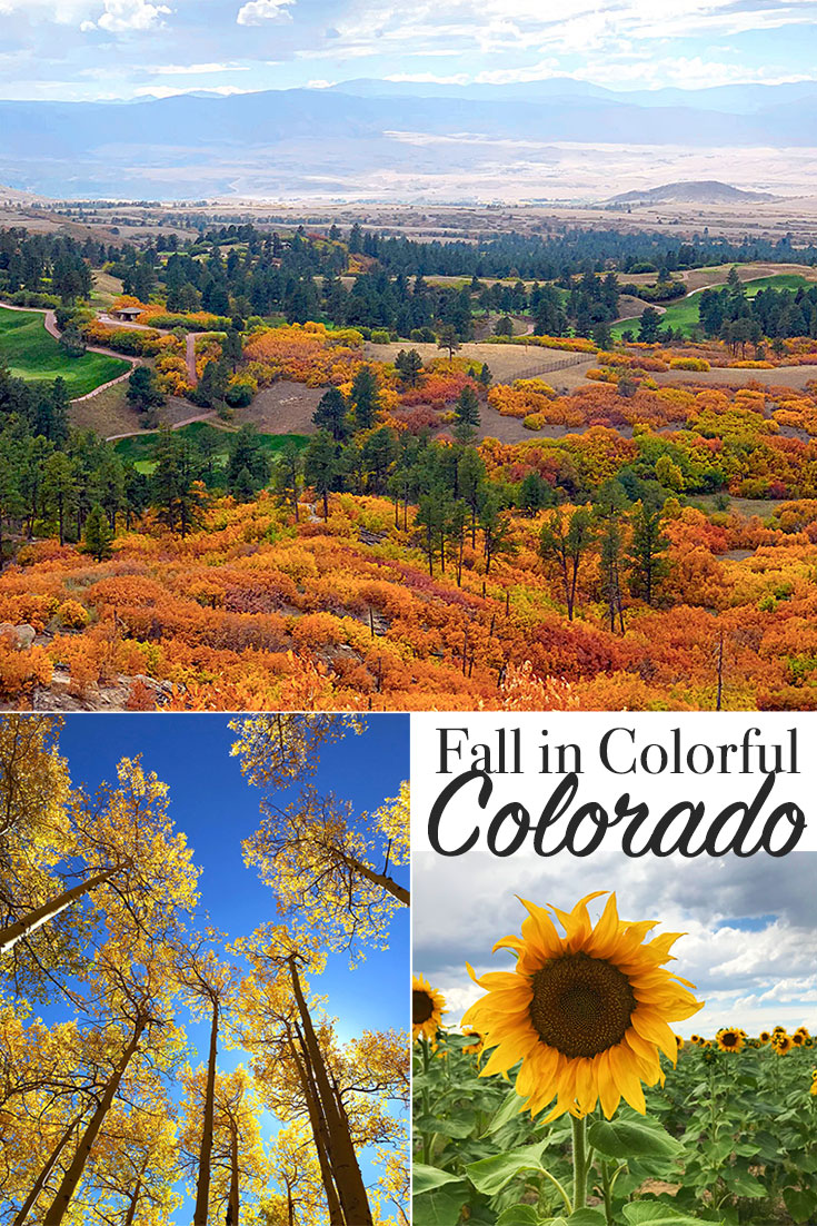 Exploring Fall Colors in Colorado - photo by Jen Goode