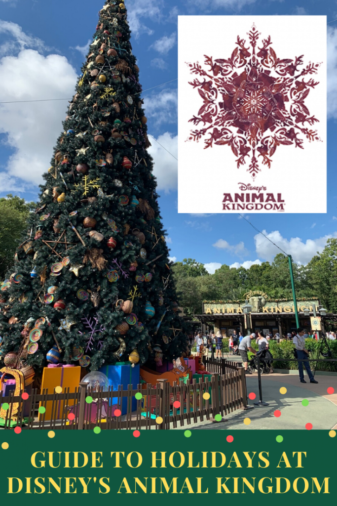 Guide to Holiday's at Disney's Animal Kingdom